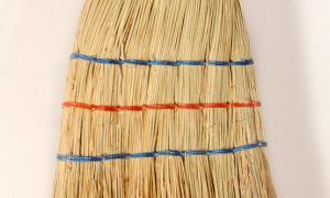 Kids broom