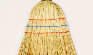 Car broom